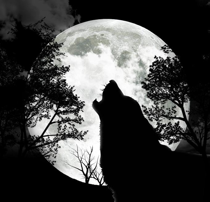 Éste mes podremos ver La Luna Llena del Lobo ¿Qué más nos trae el cielo en enero?
